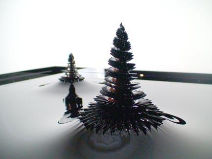 spirals_s.jpg